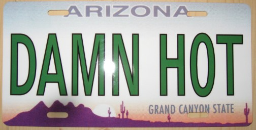 silly cactus - custom license plates and trailer hitch covers